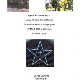 thumbnail of Annual Report APCM 2018